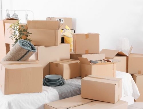 Packing List for Apartment Living
